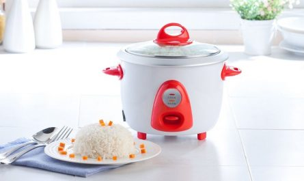 mini rice cooker for traveling